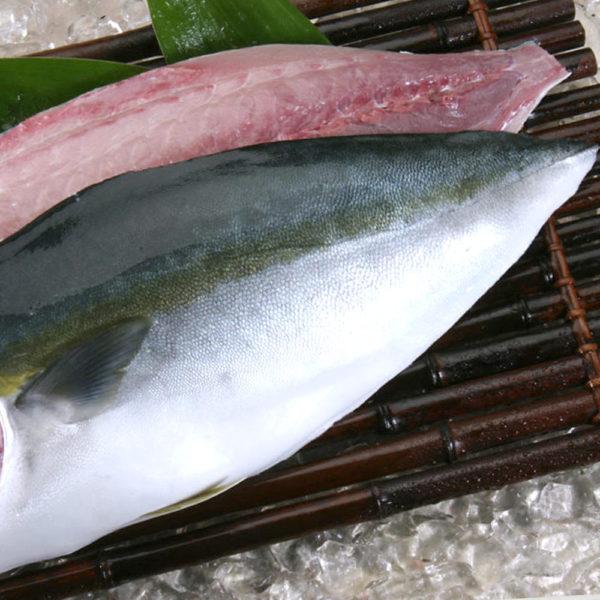 Filete de Hamachi